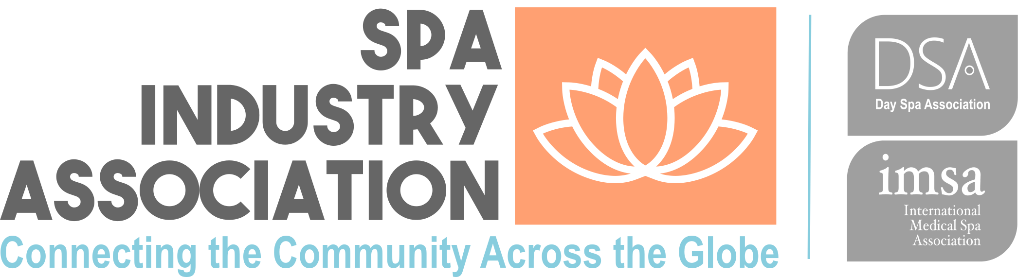 Spa Industry Association partners with SnapRetail to send their marketing emails and to give spas and salons the tools needed to succeed
